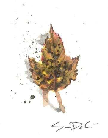Leaf 40.jpg