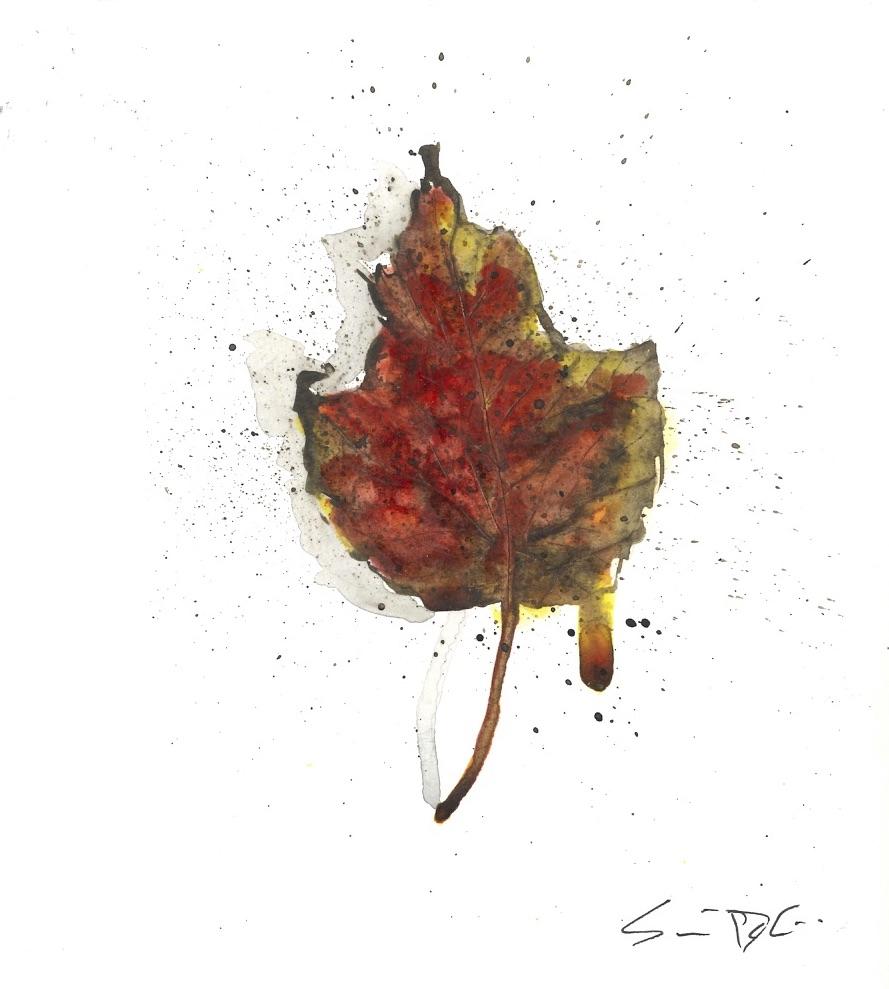Leaf 43.jpg