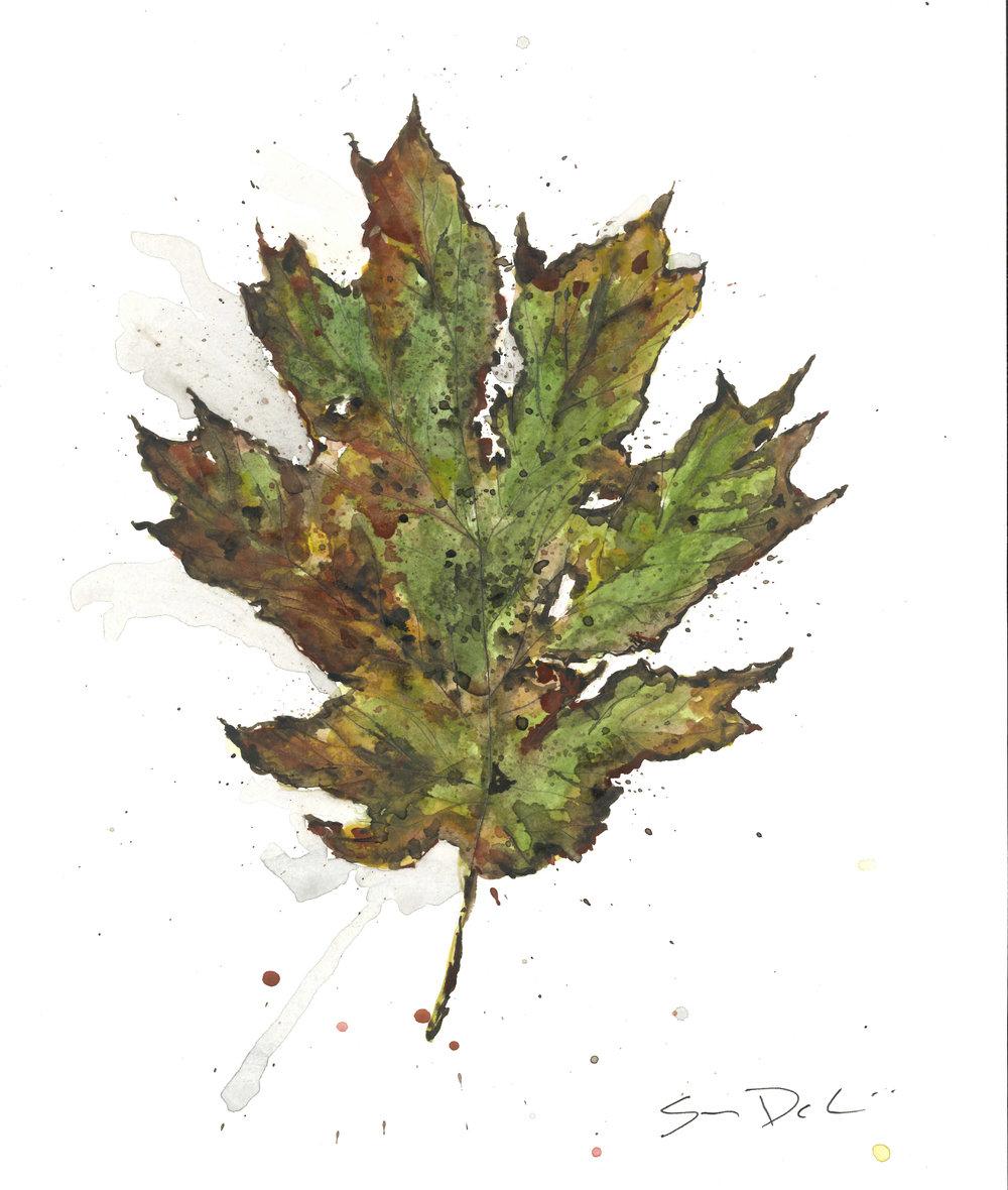 Leaf 56.jpg