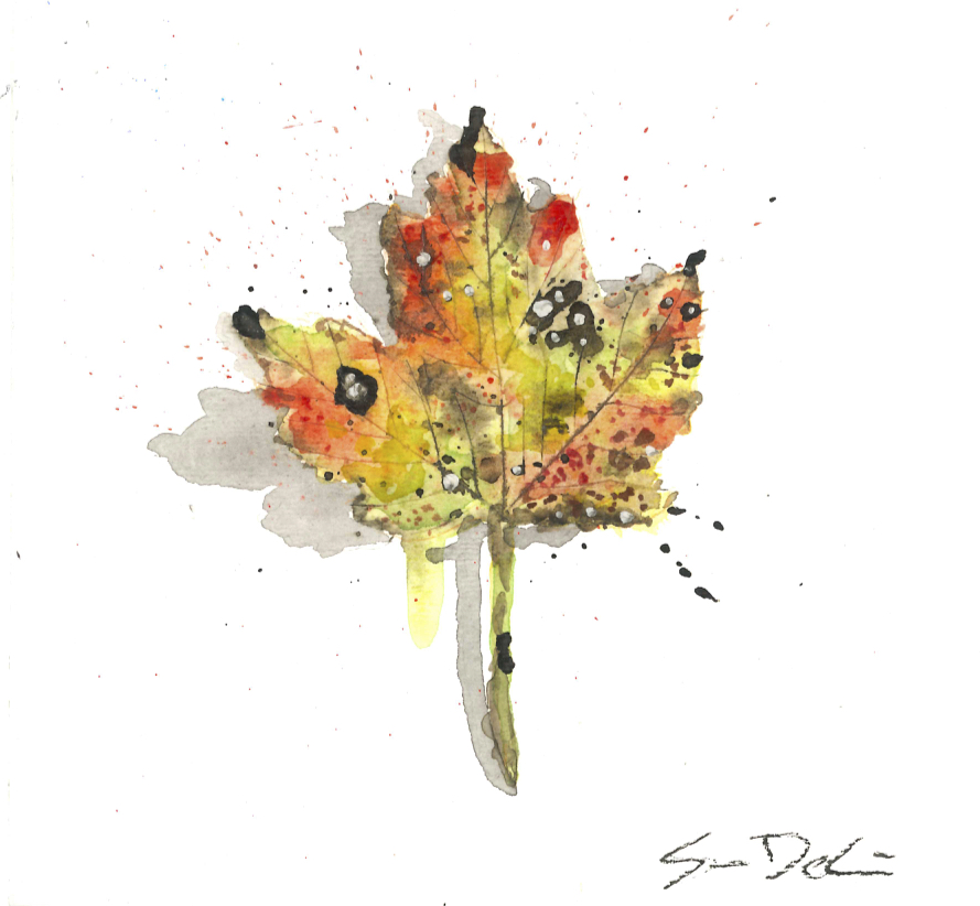Leaf 060.jpeg