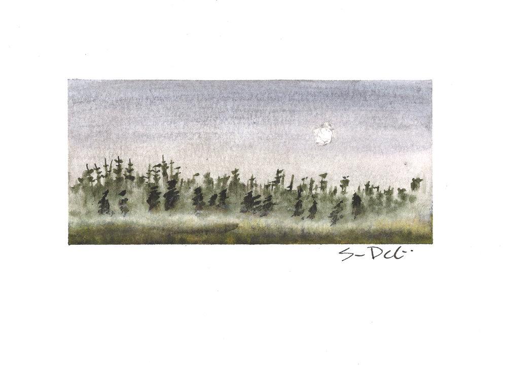 midmorning fog - SOLD