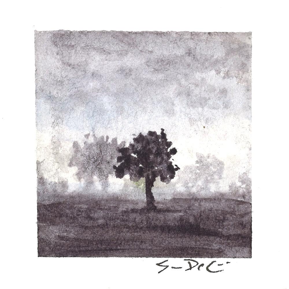 shadows in the fog II