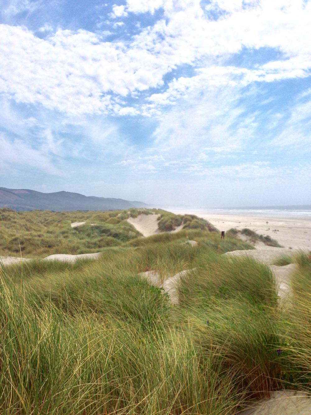 Dunes + Sea