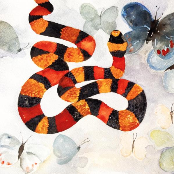 Flutterbye Studies by Deborah Stein/Bonbon Oiseau.