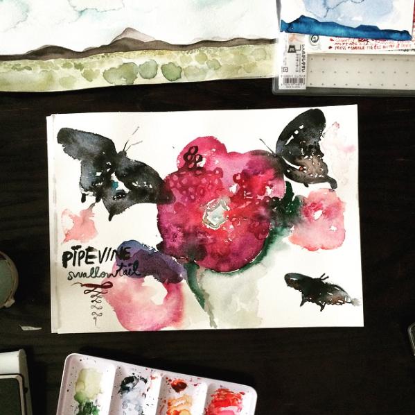 Flutterbye Studies by Deborah Stein/ Bonbon Oiseau .