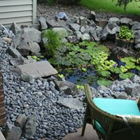 garden-pond-ideas-minneapolis.jpg