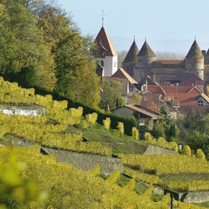 Wine, castles, mountains & more