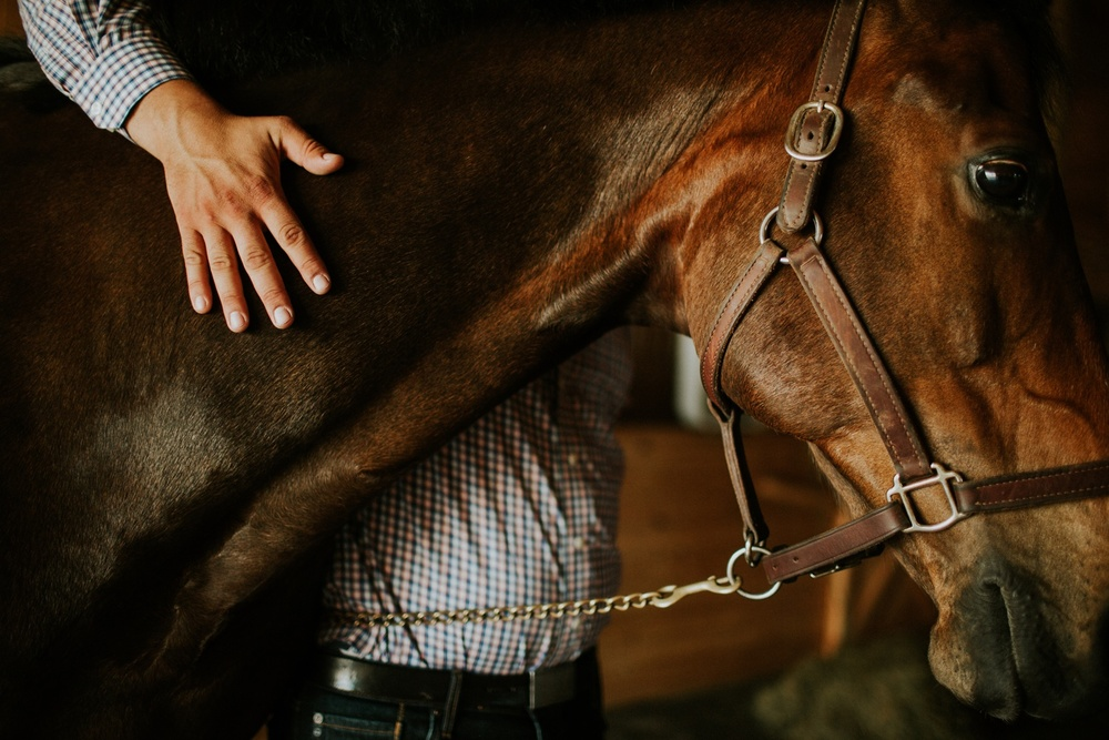 Engagement Session on a Horse Farm_0013.jpg