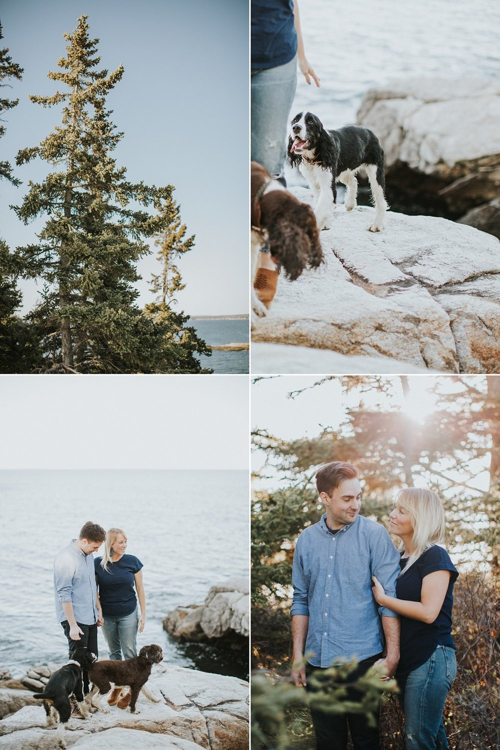 reid state park engagement maine