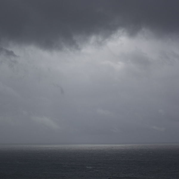 phoebe mcdonald shade.jpg