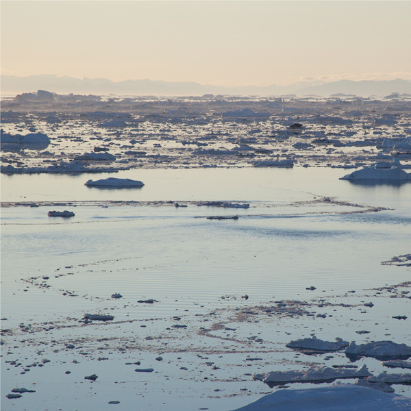 phoebe mcdonald ice 10.jpg