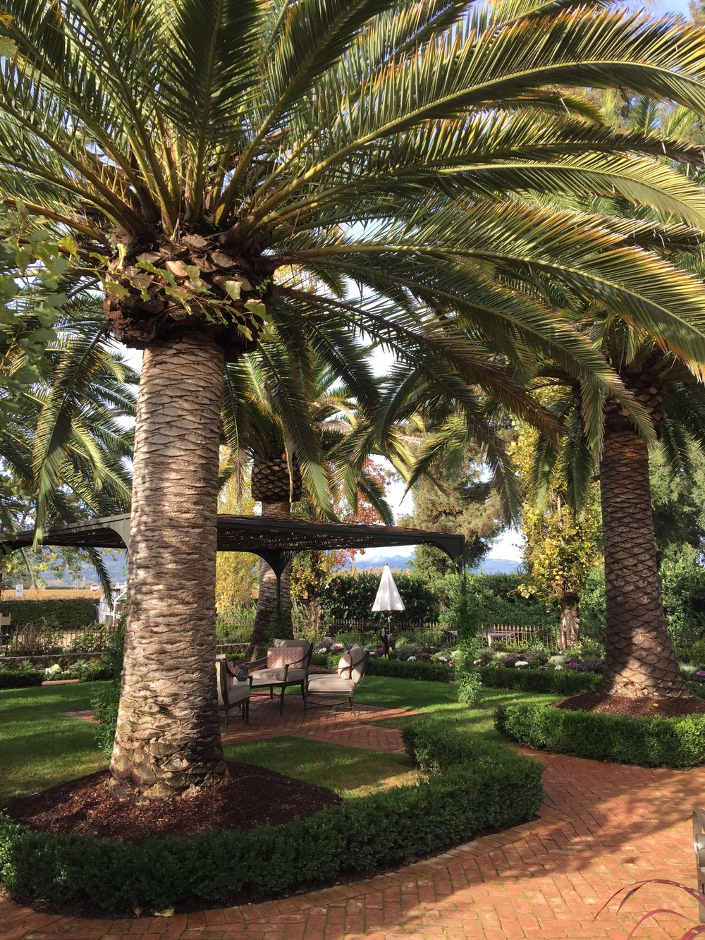 The beautiful grounds of the Caymus Winery