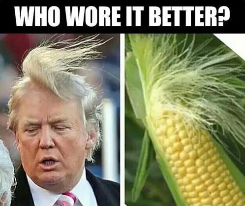 Trump: 0, Corncob: 1