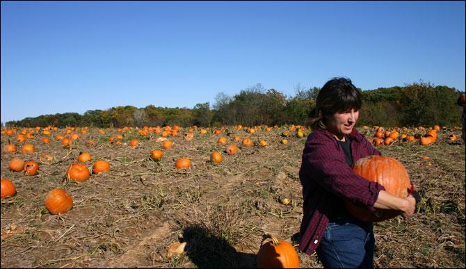 pickin-pumpkins.jpg