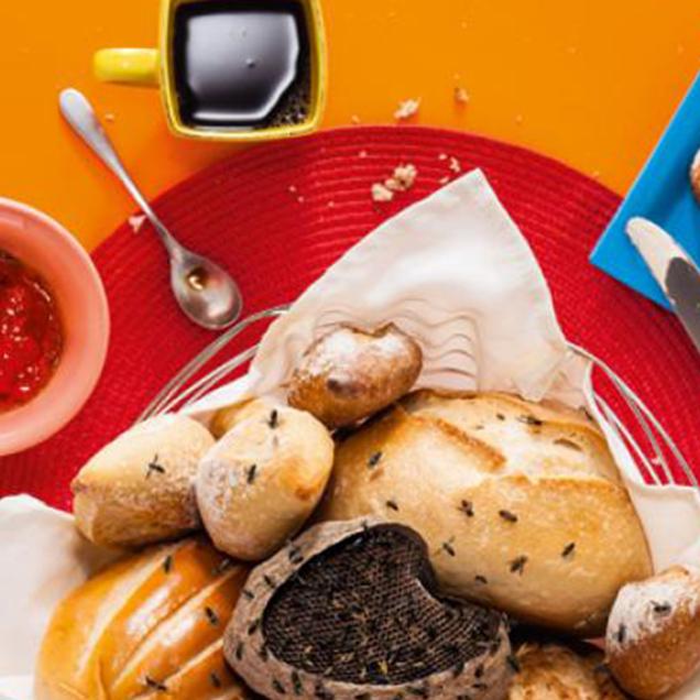 purefood-produtos-a-polemica-do-gluten.jpg