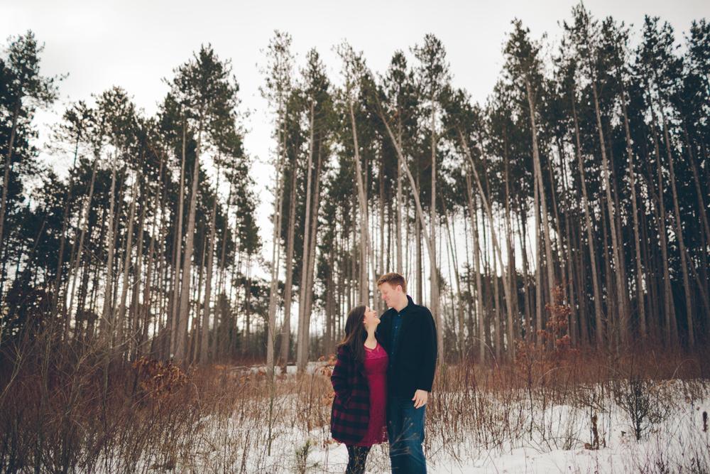 Jillian VanZytveld Photography - Grand Rapids Lifestyle Maternity Portraits - 06.jpg