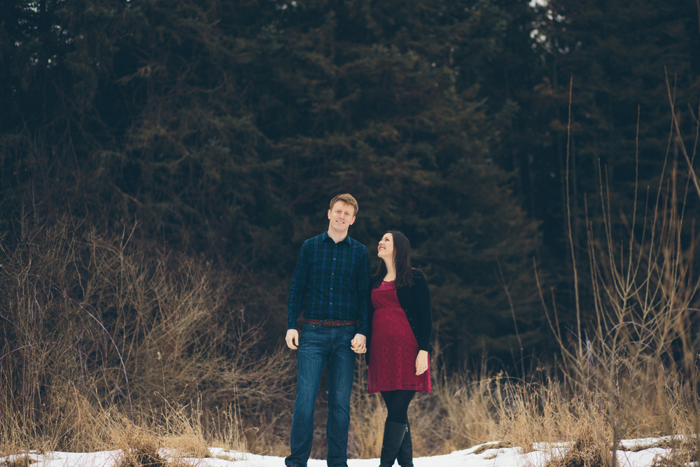 Jillian VanZytveld Photography - Grand Rapids Lifestyle Maternity Portraits - 14.jpg