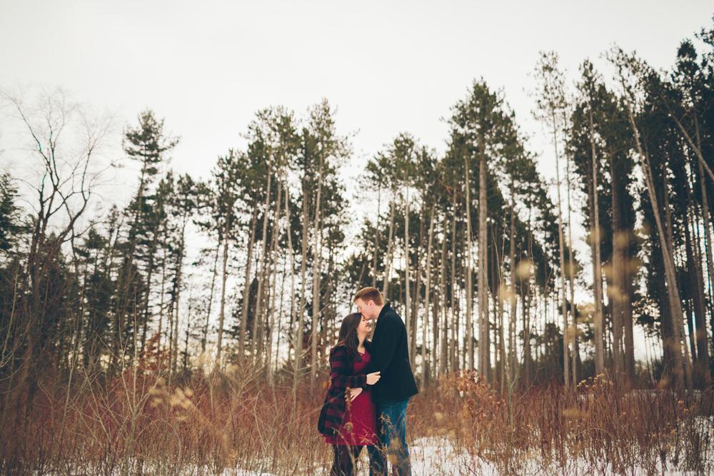 Jillian VanZytveld Photography - Grand Rapids Lifestyle Maternity Portraits - 16.jpg