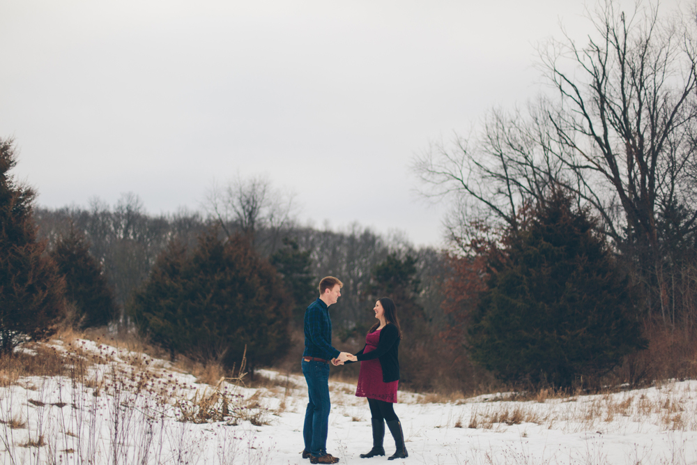 Jillian VanZytveld Photography - Grand Rapids Lifestyle Maternity Portraits - 33.jpg