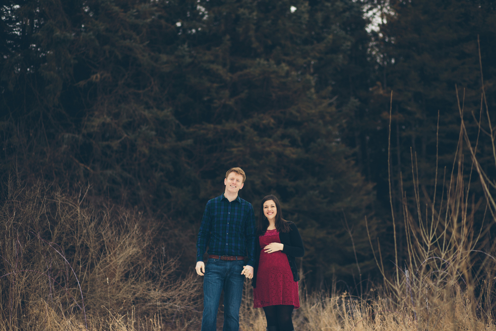 Jillian VanZytveld Photography - Grand Rapids Lifestyle Maternity Portraits - 44.jpg