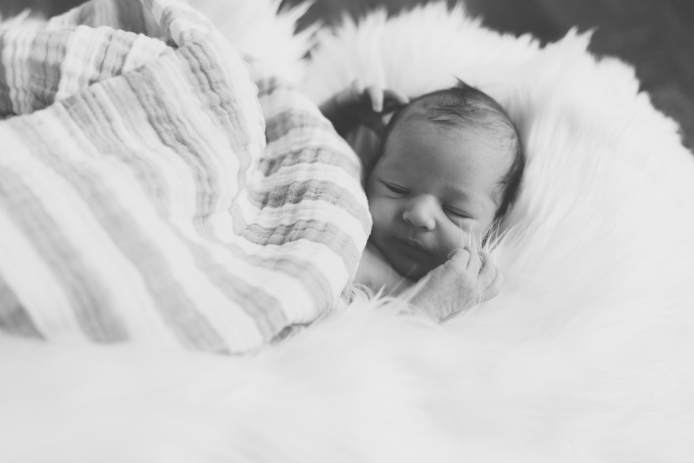 Jillian VanZytveld Photography - West Michigan Newborn Lifestyle Portraits 11.jpg