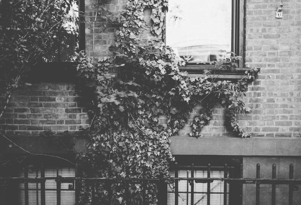 Jillian VanZytveld Photography - New York City Travel Photography 035.jpg