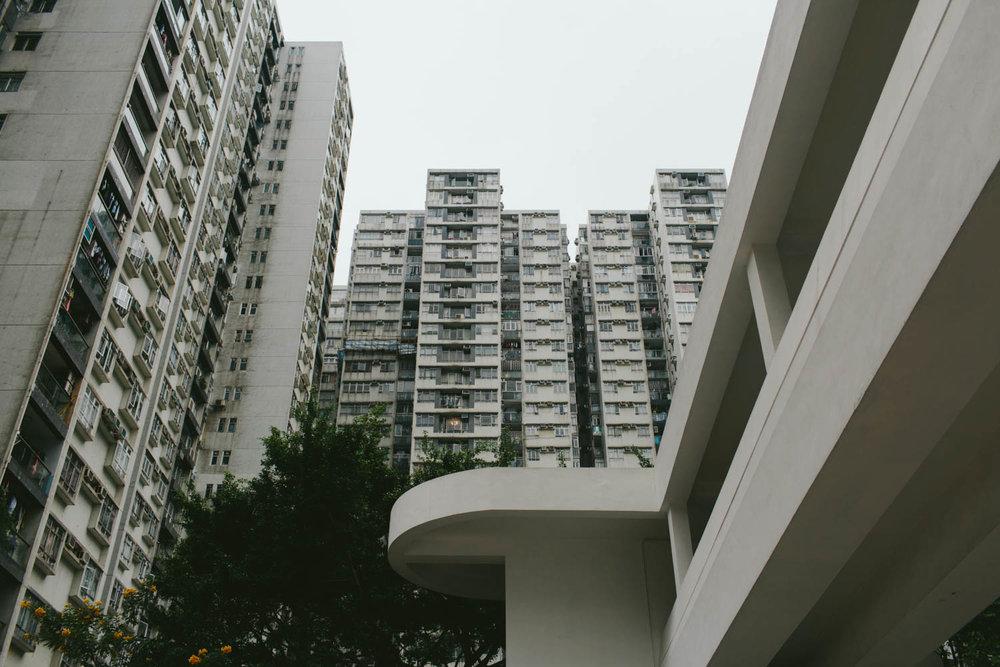 20171119-HK-012.jpg