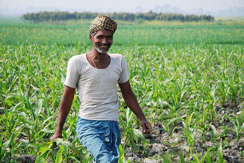 Farmer-at-work-in-maize-field-in-India.jpg