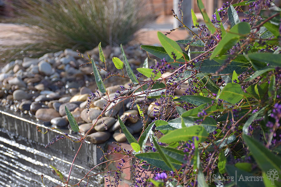 landscaping_ballarat_home-02.JPG