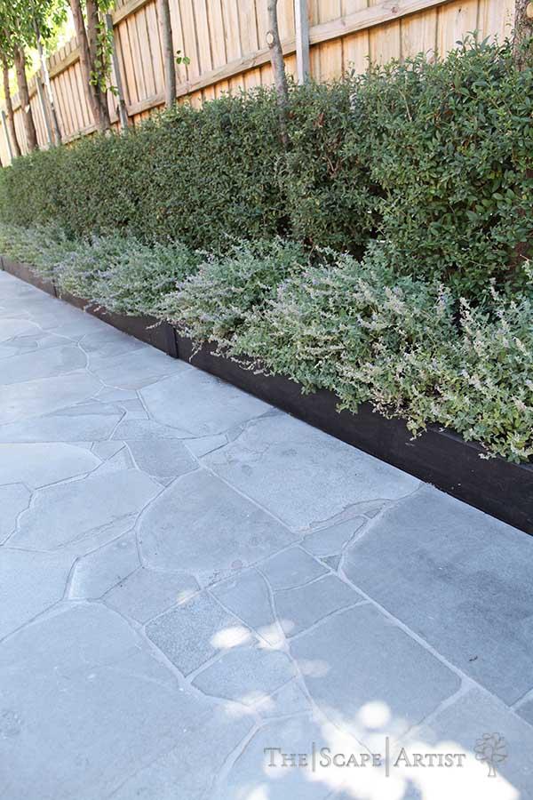 landscaping_ballarat_garden_webster-st_13.jpg