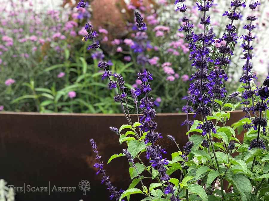 landscaper_ballarat_new-garden_alfredton_02.jpg