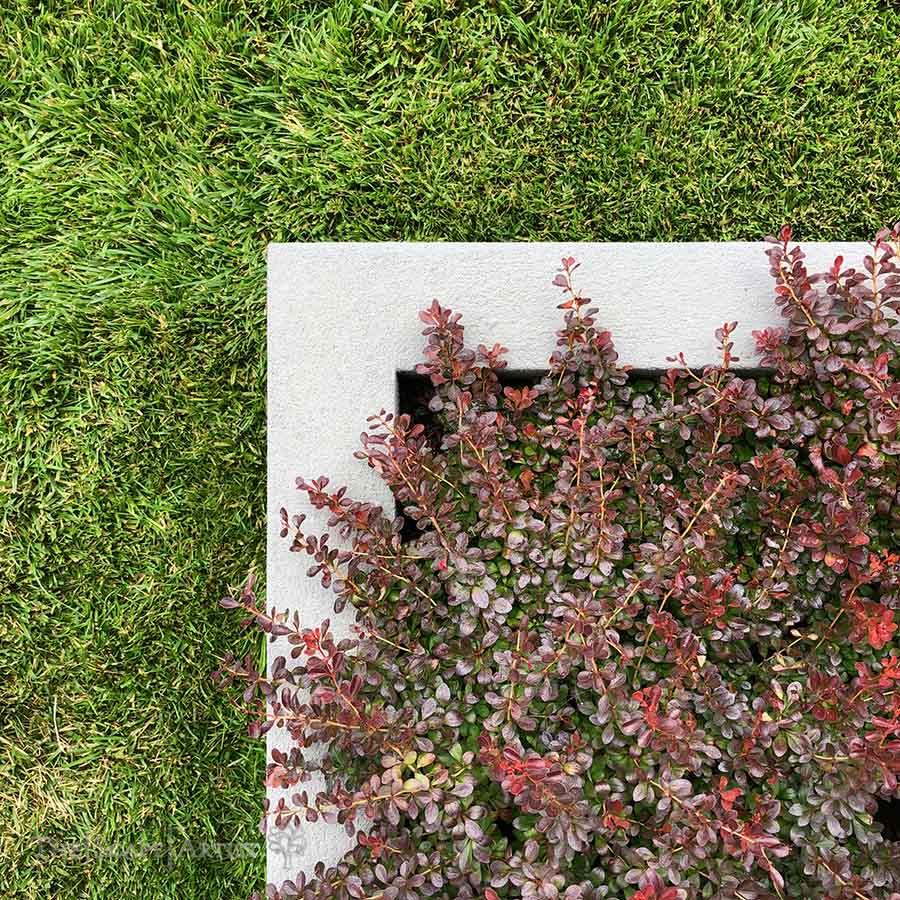 landscaper_ballarat_new-garden_alfredton_05.jpg