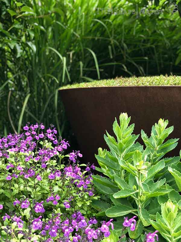 landscaper_ballarat_new-garden_alfredton_13.jpg