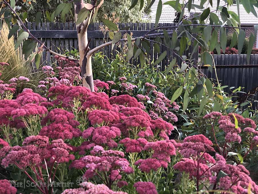 landscaping-garden-design-ballarat-moola_29.jpg