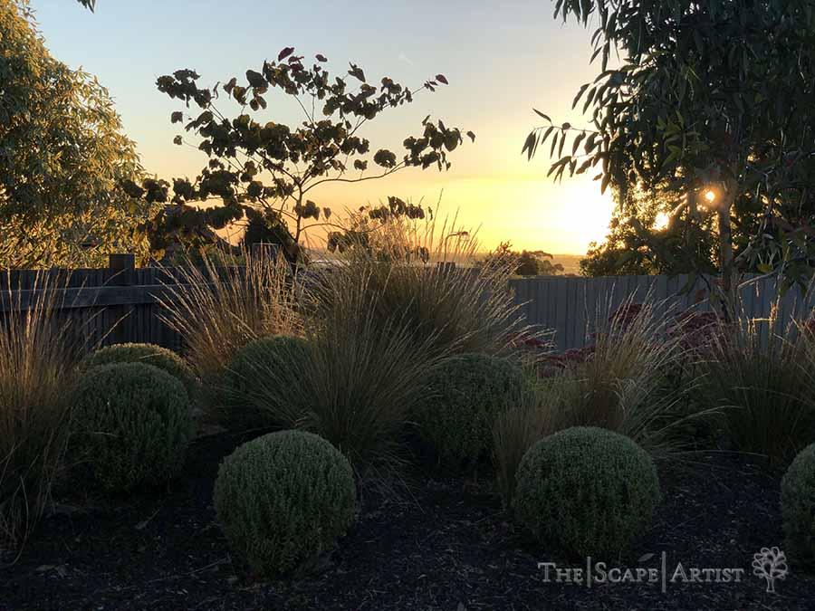 landscaping-garden-design-ballarat-moola_92.jpg