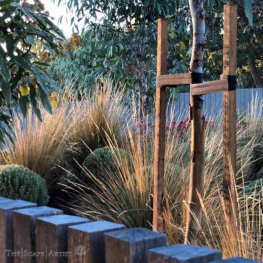 landscaping-garden-design-ballarat-moola_99.jpg