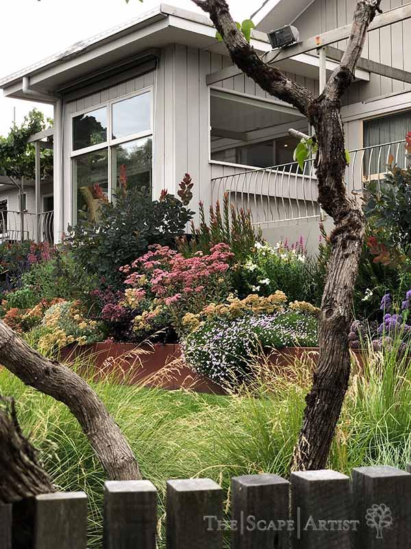 landscaping-garden-design-ballarat-moola_74.jpg