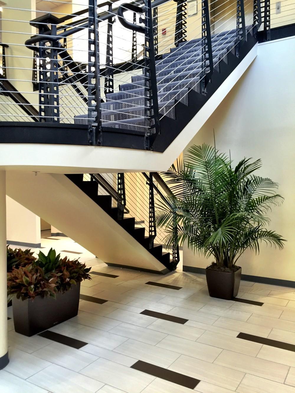 FCG Stairway.jpg
