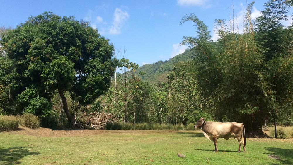 Garabito, Costa Rica