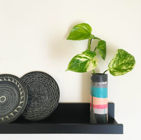 Devils Ivy in Vase