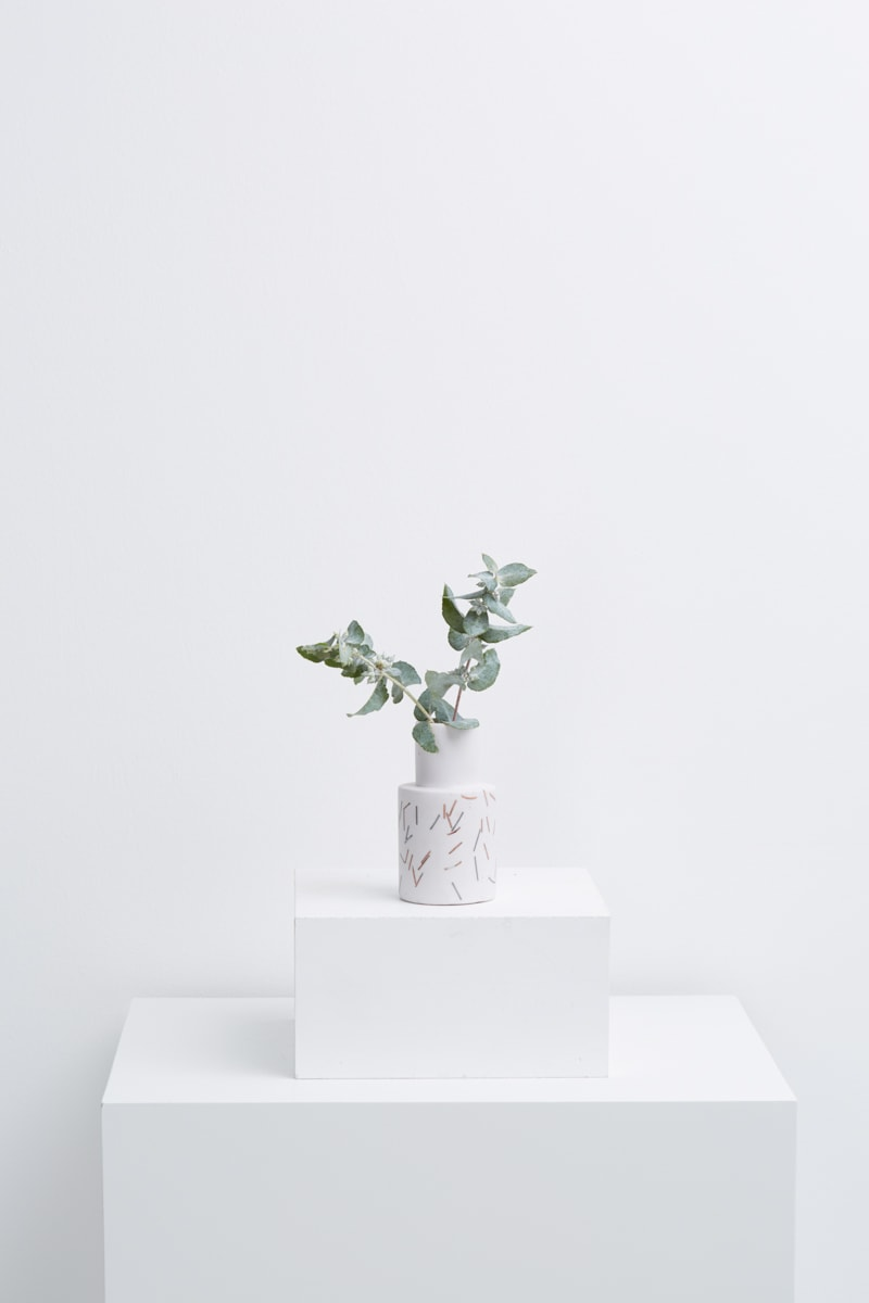 Matchstick_White_Small_Vase_with_plant-min.jpg