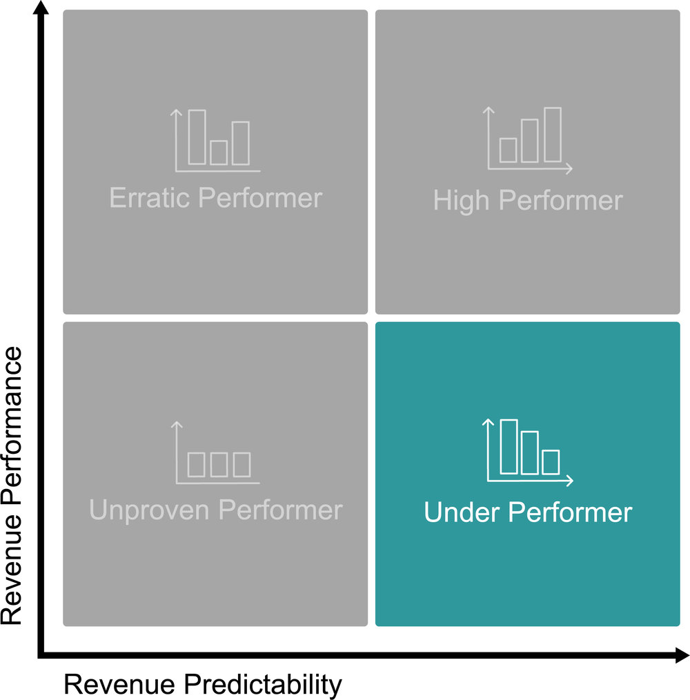 Under Performer Matrix.jpg