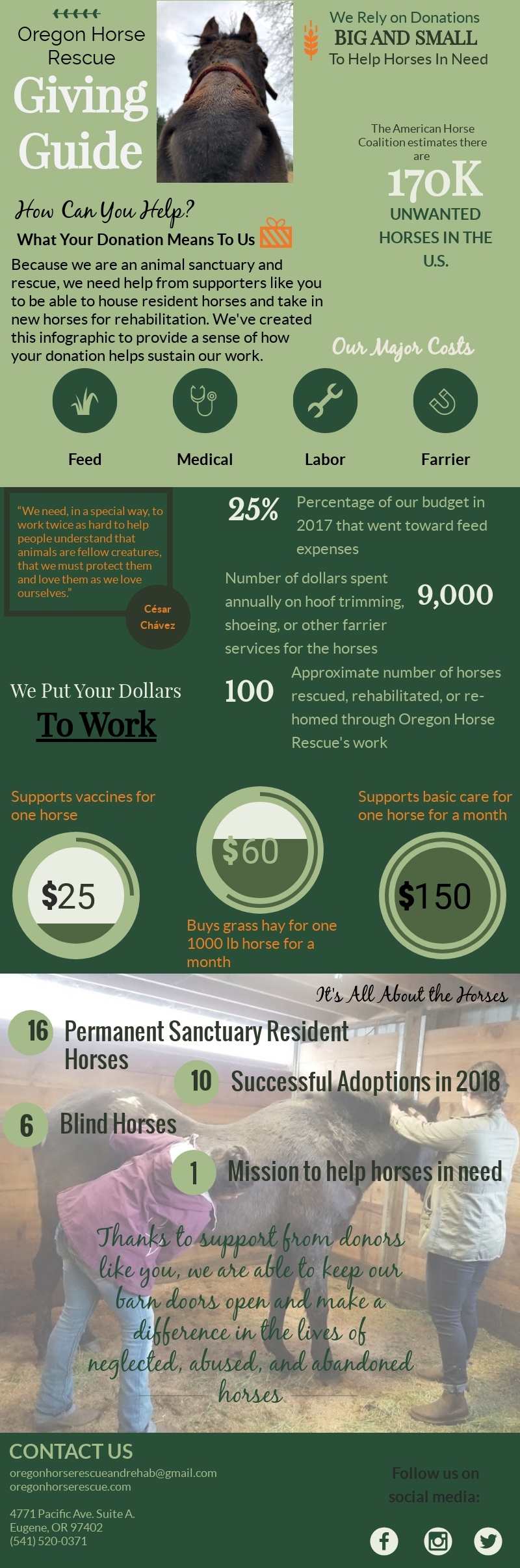 OHR-Giving-Guide-Infographic (5).jpg