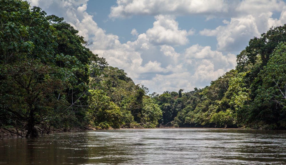 Boat ride to the Yasuni National Park, Ecuador