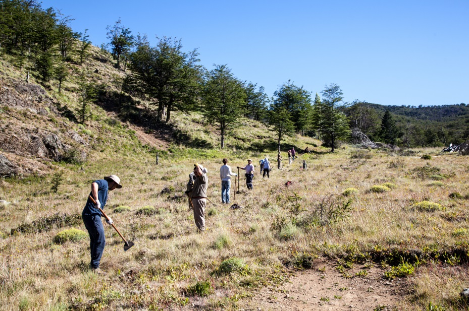Volunteers in the Patagonia National Park