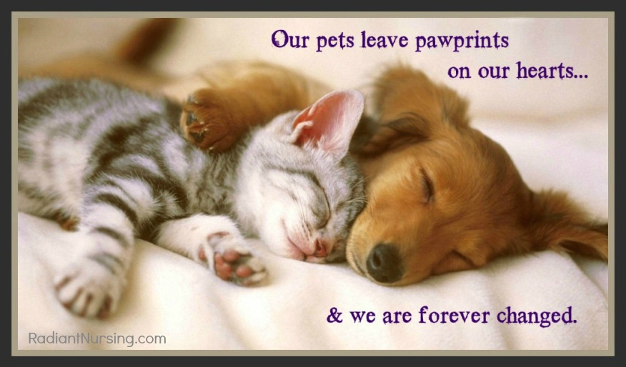 Our pets leave paw prints on our hearts.