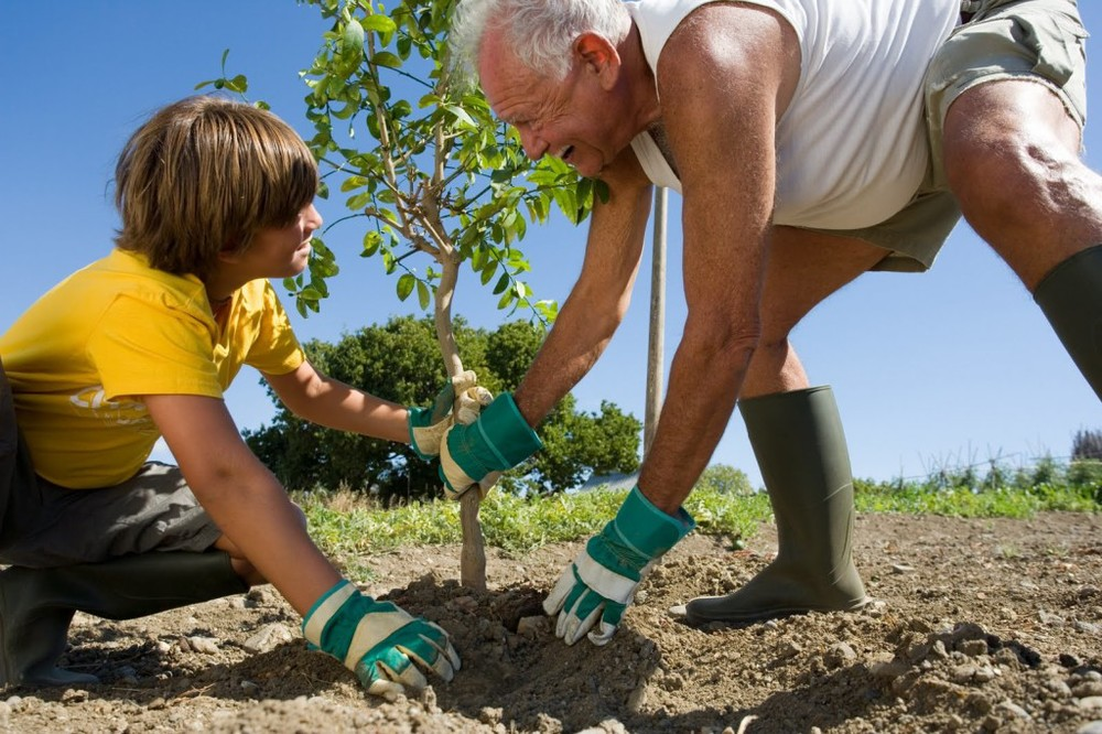 Plant a tree for Arbor Day, 22 April.