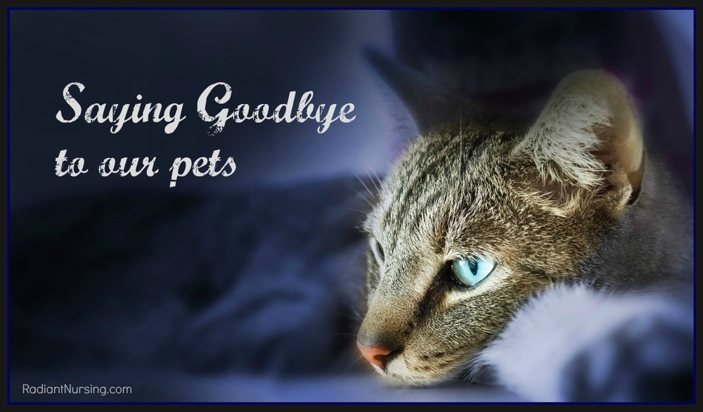 Saying goodbye to our pets is never easy.