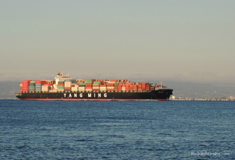 A containership on San Francisco Bay. It is a working harbor.