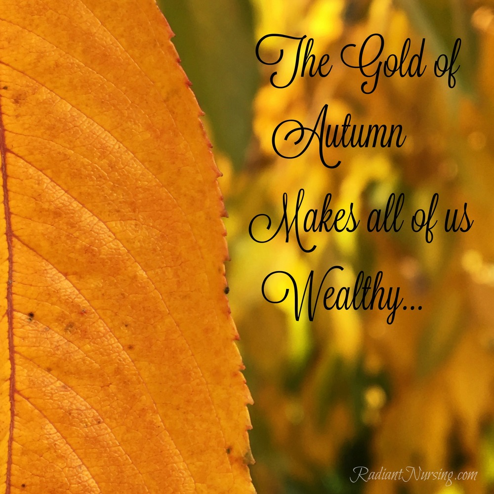 The gold of autumn makes all of us wealthy. Colors of fall.